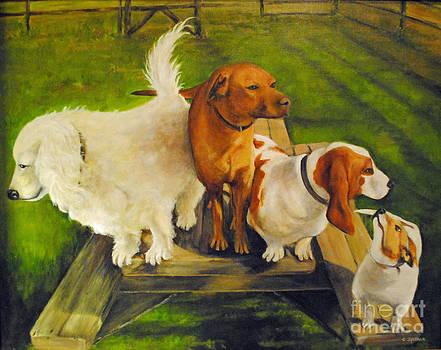 Carolyn Shireman - Dog Friends