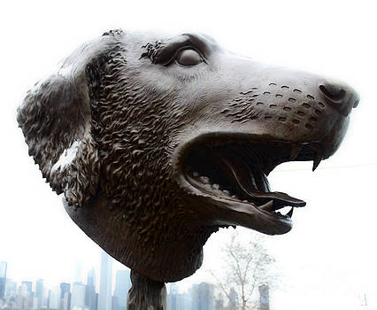 Gregory Dyer - Dog Head