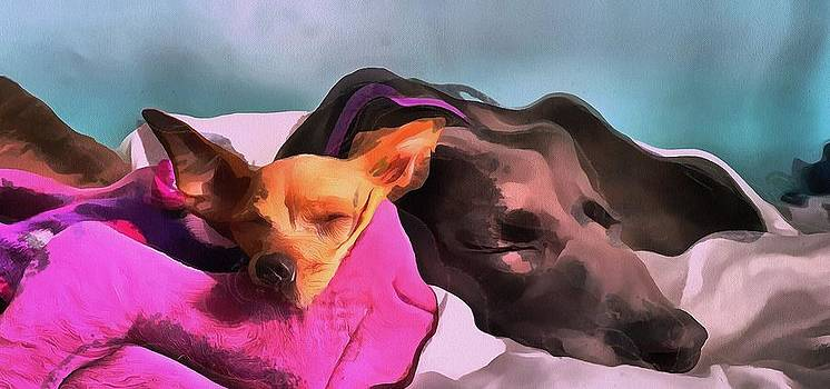 Dog Portrait two dogs resting together in magenta and gray in acrylic by MendyZ