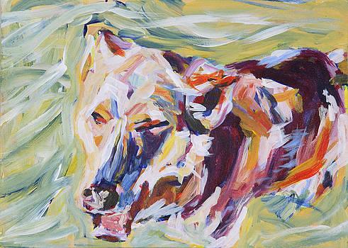 Dog by Toni Jonas-Silver