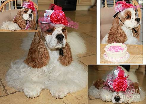 Birthday Cakes For Dogs In Los Angeles ~ Best cake decorating kiddies girls images