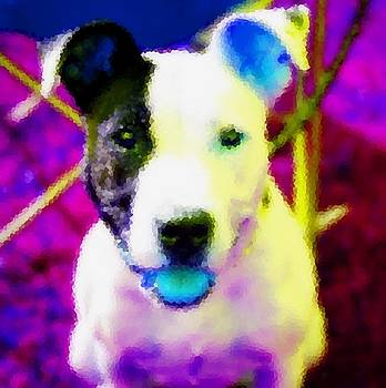 Dog With Blue Tongue by Kathy Budd
