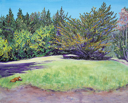 Dog with Bone in Spring Meadow by Asha Carolyn Young