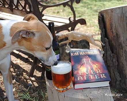 Dogs Don't Drink Beer by Jill Baum