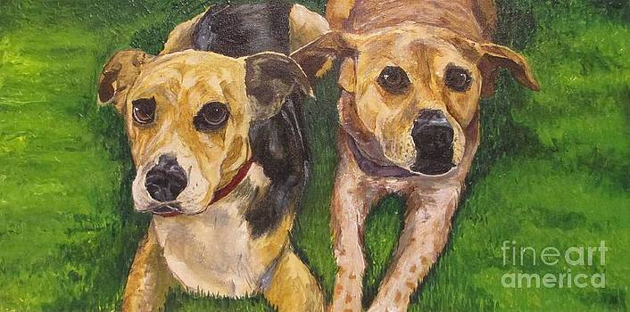 Andrew Hench - Dogs in the Grass