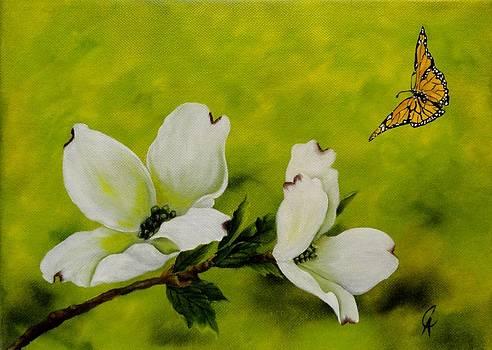 Dogwood and Butterfly by Carol Avants