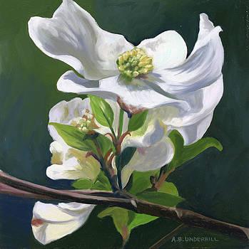 Dogwood Blossom by Alecia Underhill