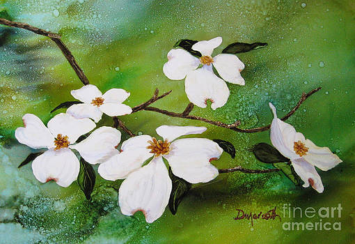 Dogwood Blossoms by Diane Marcotte