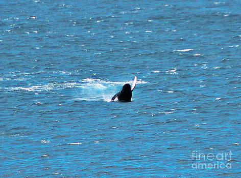 Doing the Backstroke by Patricia Griffin Brett