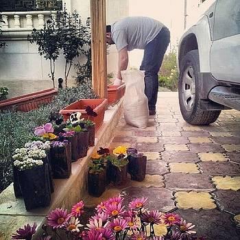 Doing The Flowers !-\ #amman #jordan by Abdelrahman Alawwad