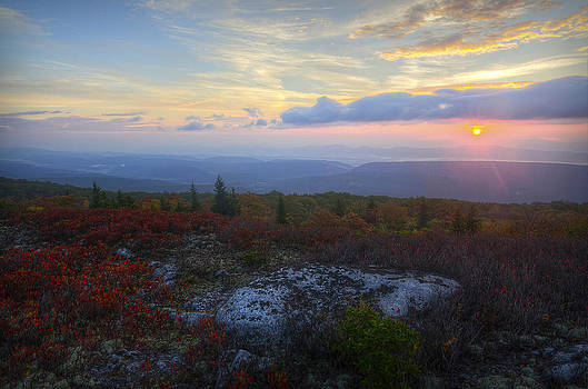Dolly Sods Sunrise by Michael Donahue