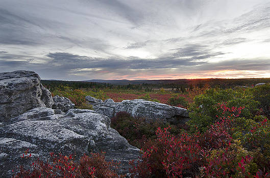 Dolly Sods Sunset by Michael Donahue