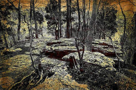 Dolomite Cliff by Diana Boyd