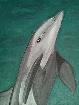 Dolphin by Carlos Alvarado