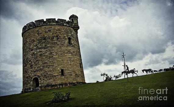 Don Quixote by Audrey Wilkie