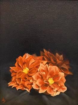 Donna's Garden by Alison Schmidt Carson