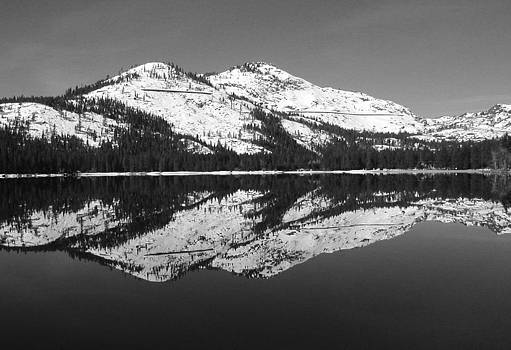 Donner Black and White by Mickey Hatt