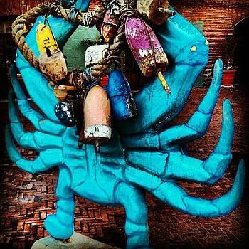 Don't Be Crabby by Rebecca Kowalczik