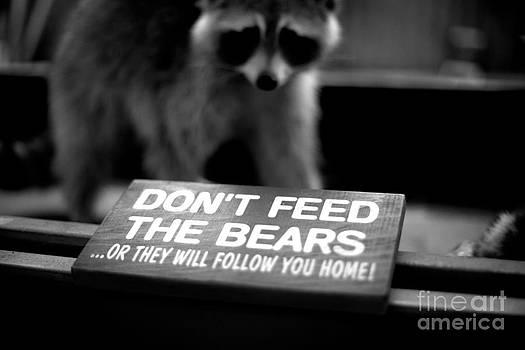 Dont Feed The Bears by Emmett Mavy