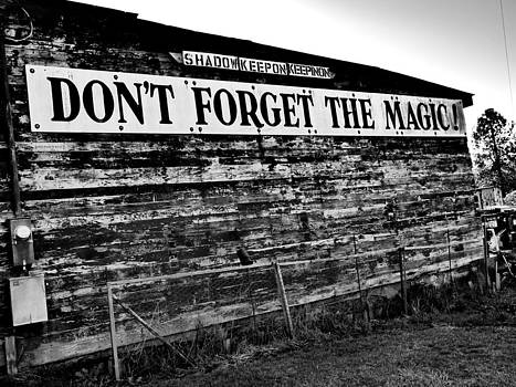 Don't Forget The Magic by Petra Skerritt