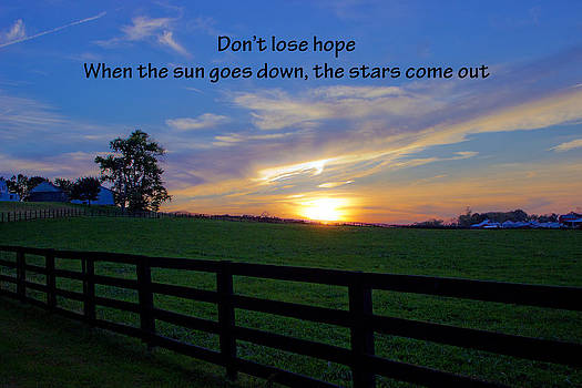 Don't Lose Hope by  Tina McGinley