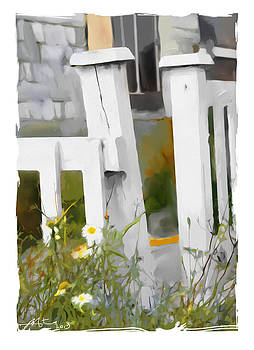 Don't Pick The Daisies by Bob Salo