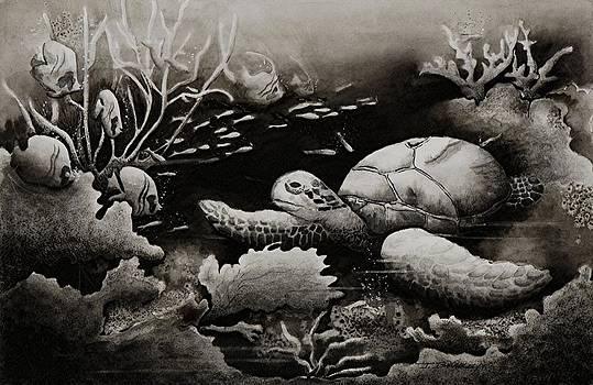 Joy Bradley - Doomed Sea Life