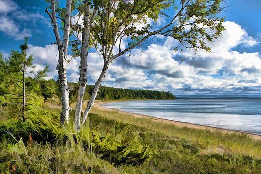 Christopher Arndt - Door County Europe Bay Birch