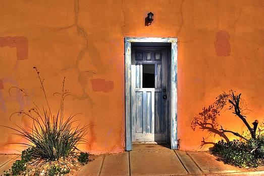 Tam Ryan - Door
