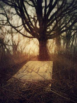 Door to Nowhere by Kim Zier