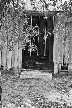 Door to the pAST by Teresa Dixon