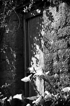 Doorway by David Durham