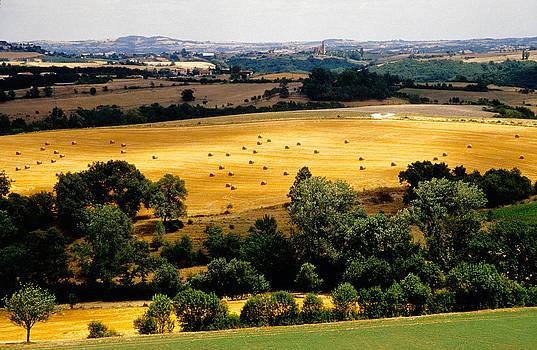 Dennis Cox - Dordogne Valley vista