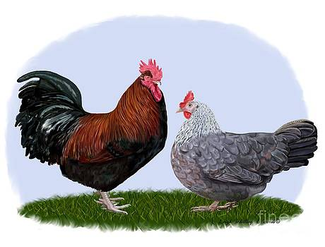 Dorking Rooster and Hen by Leigh Schilling