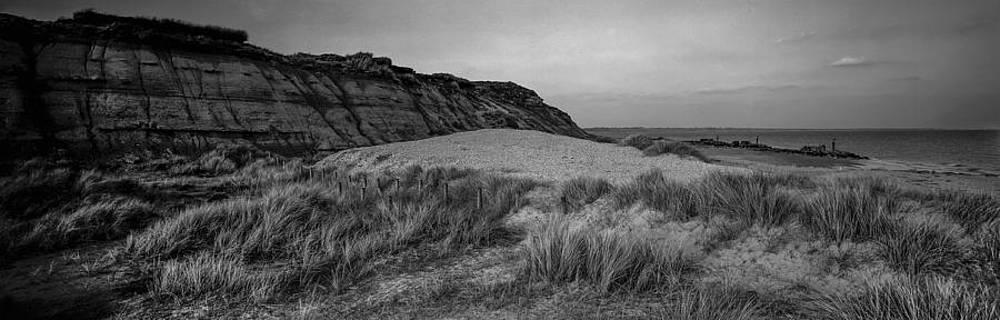 Dorset Coastline by Tony Wainwright