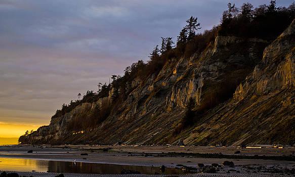 Double Bluff Beach by Blanca Braun