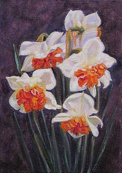 Ruth Soller - Double Daffodil Replete