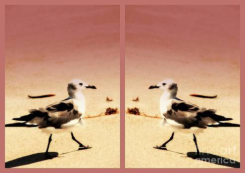 Susanne Van Hulst - Double Gulls Collage
