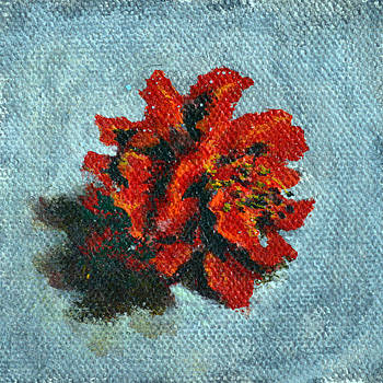 Usha Shantharam - Double Hibiscus