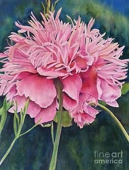 Double Poppy by Doris Daigle