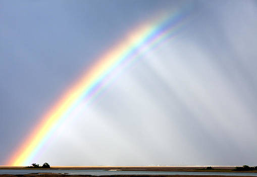Double Rainbow Arch  by Jo Ann Tomaselli