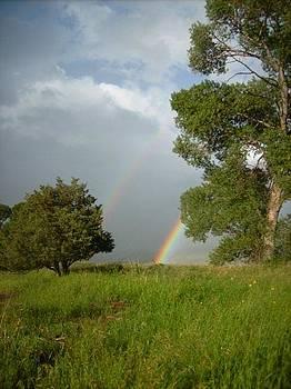 Double Rainbow in Oaks by Misty Ann Brewer