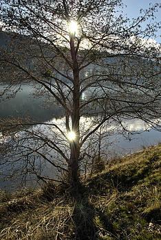 Randal Bruck - Double Sun