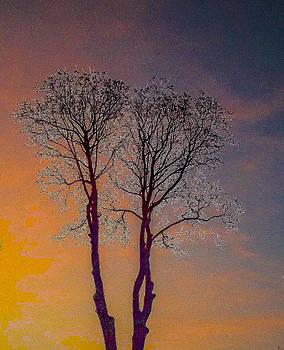 Algirdas Lukas - Double Tree
