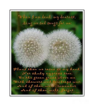 Barbara Griffin - Double Wishes Quote - When I Die - Dandelion