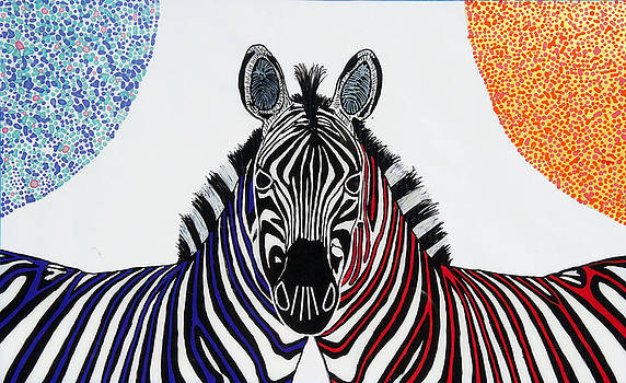 Double Zebra by Patrick OLeary