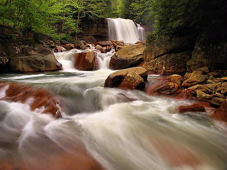 Matthew Winn - Douglas Falls in Spring