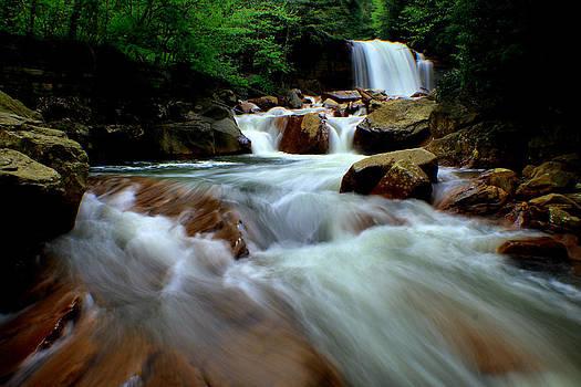 Matthew Winn - Douglas Falls in Summer