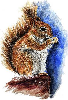 Ellen Miffitt - Douglas Squirrel