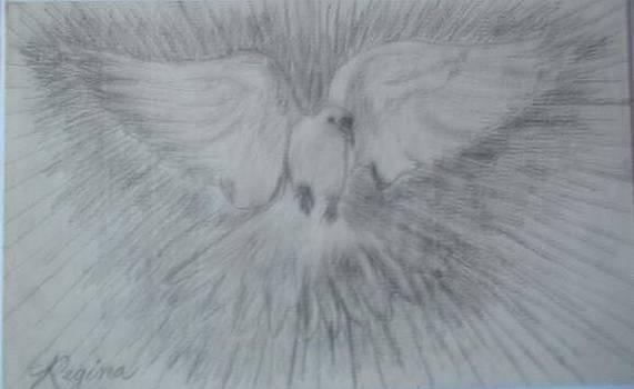 DOVE of PEACE by Regina Taormino